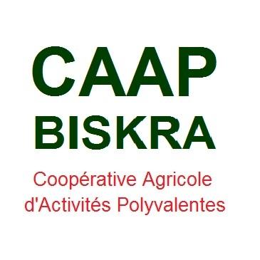 CAAP BISKRA