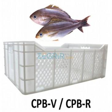 CPB (caisse poisson blanc)